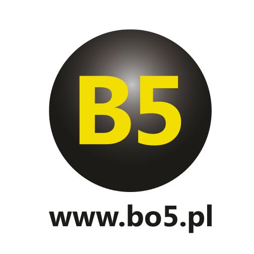 logo bo5